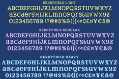 Berryfield - a quirky slab serif font family! Product Image 2