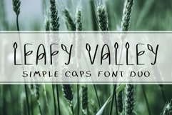 LEAFY VALLEY - Hand-drawn Font DUO Product Image 1