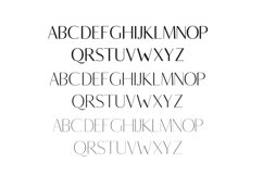 Berton Sans Serif Typeface Product Image 2