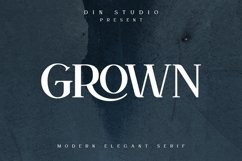 GROWN - Modern Serif Product Image 1