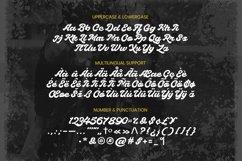 Web Font Baclines Font Product Image 5