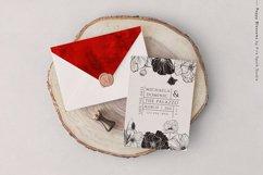 Poppy Blossom Vector Illustrations Product Image 5