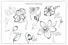 Pencil Brushes for Procreate Product Image 4