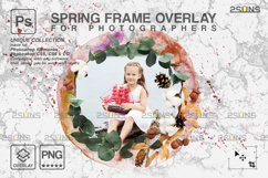 Spring flower digital frames overlay Easter Product Image 3