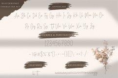 Baster Monky - Monoline Script Font Product Image 5