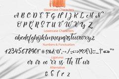 Summer Beach Handwriting Font Product Image 4