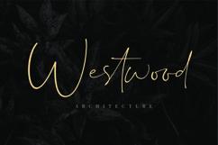 Dalmatins // Elegant Signature Font Product Image 5