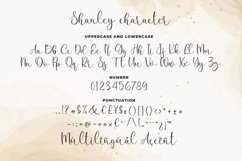 Shanley a Romantic Calligraphy Font Product Image 6