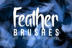 Real Feather Photoshop Brushes Product Image 1