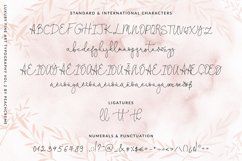 Oh Darling- Ethereal Script Font Product Image 2