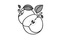 Apples hand drawn vector illustration. Product Image 3