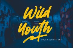 Wild Youth - Brush Script Font Product Image 1
