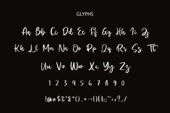 Doretta Brush Script Font Product Image 2