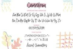 Camelleon Monoline Handwritten Font Product Image 6