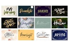 Mega Exclusive Font Bundle - 350 Font Product Image 2