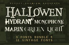 5 Fonts Bundle 4 Product Image 1