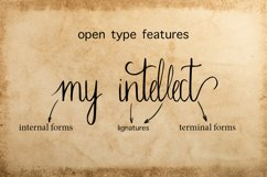 Sherlock calligraphy script font Product Image 2
