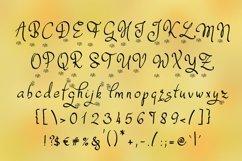 Dafodyl Font Product Image 2