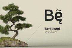 Berkslund Product Image 1
