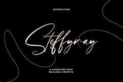 Steffyray Signature Font Product Image 1