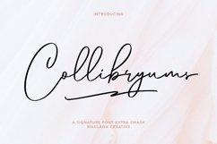 Collibryums Signature Font Extra Swash Product Image 1