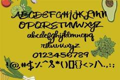 PN Cilantro Leaf Product Image 3