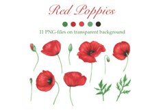 Poppies and Wildflowers Product Image 2