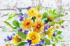 Summer Dandelion Clipart Watercolor  Product Image 7