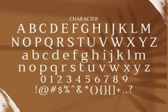 Web Font Seriola Product Image 6