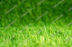 12 x Artificial Grass Stock Photos Product Image 2