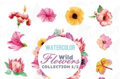 Watercolor wild flowers clip art pack, exotic watercolor flowers valentine clip art. Eps, png, jpg, svg,  vector files included. Part 1/2 Product Image 1