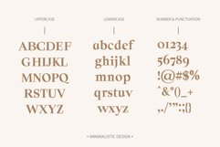 Solomon Serif Font Family Product Image 2