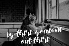 The black cats brush Script Product Image 2