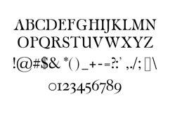Carita Clean Serif 3 Font Family Product Image 2