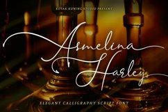 Beautiful Script - Asmelina Harley Font Product Image 1