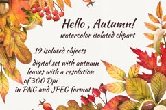 Watercolor autumn leaves, clipart Product Image 1