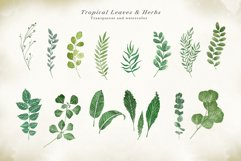 Watercolor & Gold Tropical Leaves Collection Product Image 3