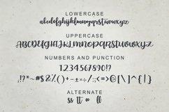 Bellco -Handwritten Font Product Image 4