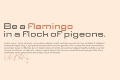 Web Font Delico Product Image 4