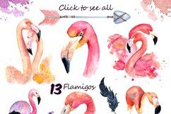 Boho flamingo Watercolor set Product Image 2