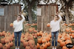 Pumpkin Photoshop Actions And ACR Presets, Fall preset Product Image 4
