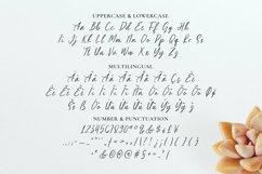 Web Font Glamios Font Product Image 5