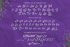 Web Font Lavender Script Product Image 4