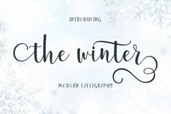 The Winter | WEB FONT Product Image 1
