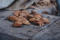 Apricot kernels on wooden background #2 Product Image 1