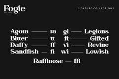 Fogie Modern Serif Font Product Image 5
