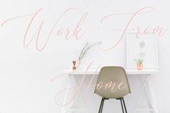 Amantea Script Font Product Image 6