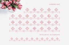 Tulip Monogram split letter font Product Image 6