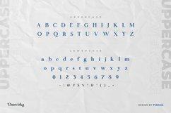 Danviska - An Elegant Modern Serif Font Product Image 3