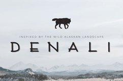 Denali | A Wild Alaskan Sans-Serif Product Image 1